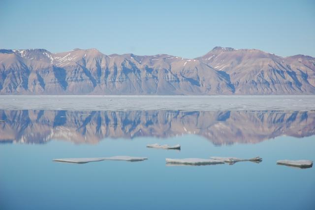 Kong Oscar fjord, juli 2008